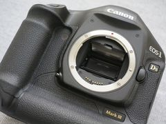 Canon 1DS mark III, пробег 19К