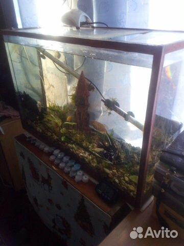 Продам аквариум 89788263387 купить 1